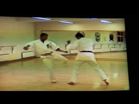 Kicking techniques (keri waza) in 1990 Isshinryu Karate Denmark Image 1