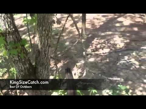 Crazy First Person View Hog Hunt Caught On Video