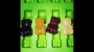 Vegan~NO Gelatin~ 🐻Gummy Bears made with Condensed Organic Fruit Juices🍇