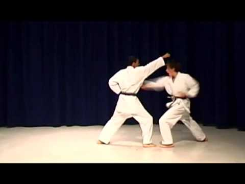 Shotokan Karate Syllabus First Belt Requirements video