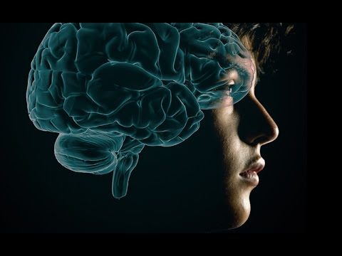 How Teenage Brains Are Primed For Addiction