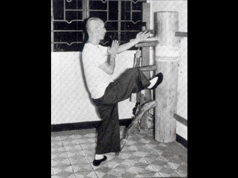 Wing Chun   - Ip Man training and forms part 1 Image 1
