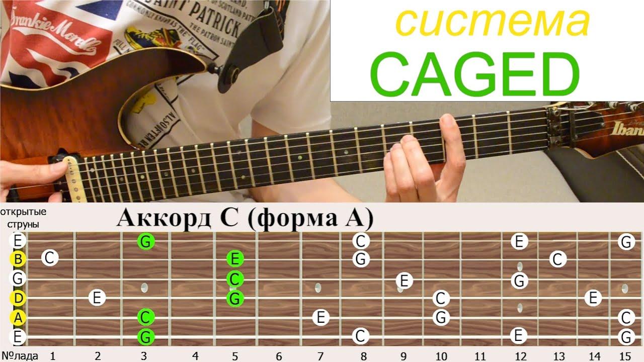 Фото схемы всех аккордов
