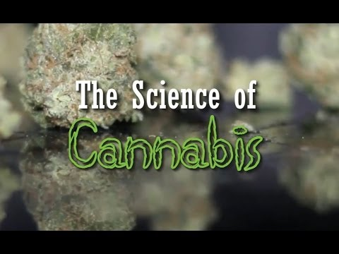 The Science of Cannabis (New Documentary)
