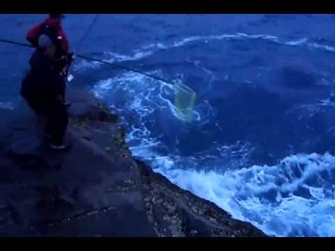 荒磯でのヒラスズキの釣り方in鹿児島 一投入魂が鍵!