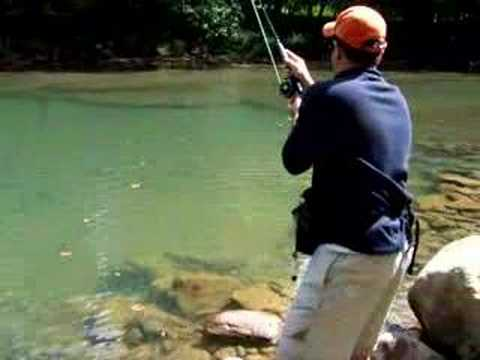 Fly Fishing West Virginia Wild Brown Trout 19 inch catch
