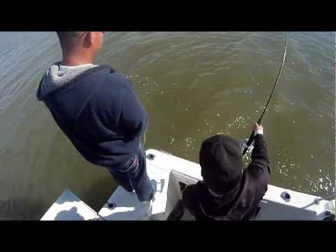 66 inch Sturgeon fishing in SF Bay California