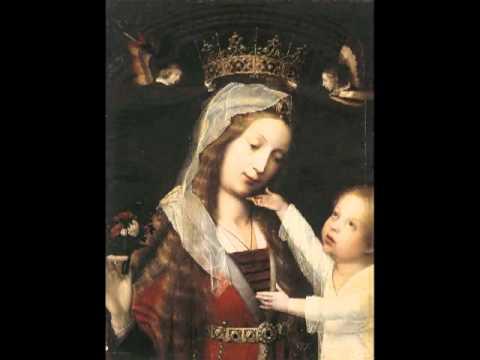 Matthaeus Pipelare - Salve Regina
