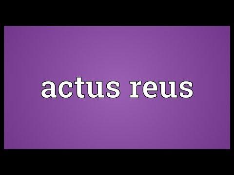 Header of Actus Reus