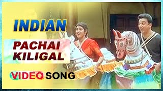 download lagu Pachai Kiligal  Song  Indian Tamil Movie  gratis