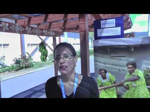 Roberta Clarke of UN Women at the Conference on Small Island Developing States