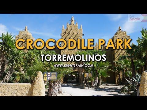 Crocodile Park Torremolinos Spain 2016