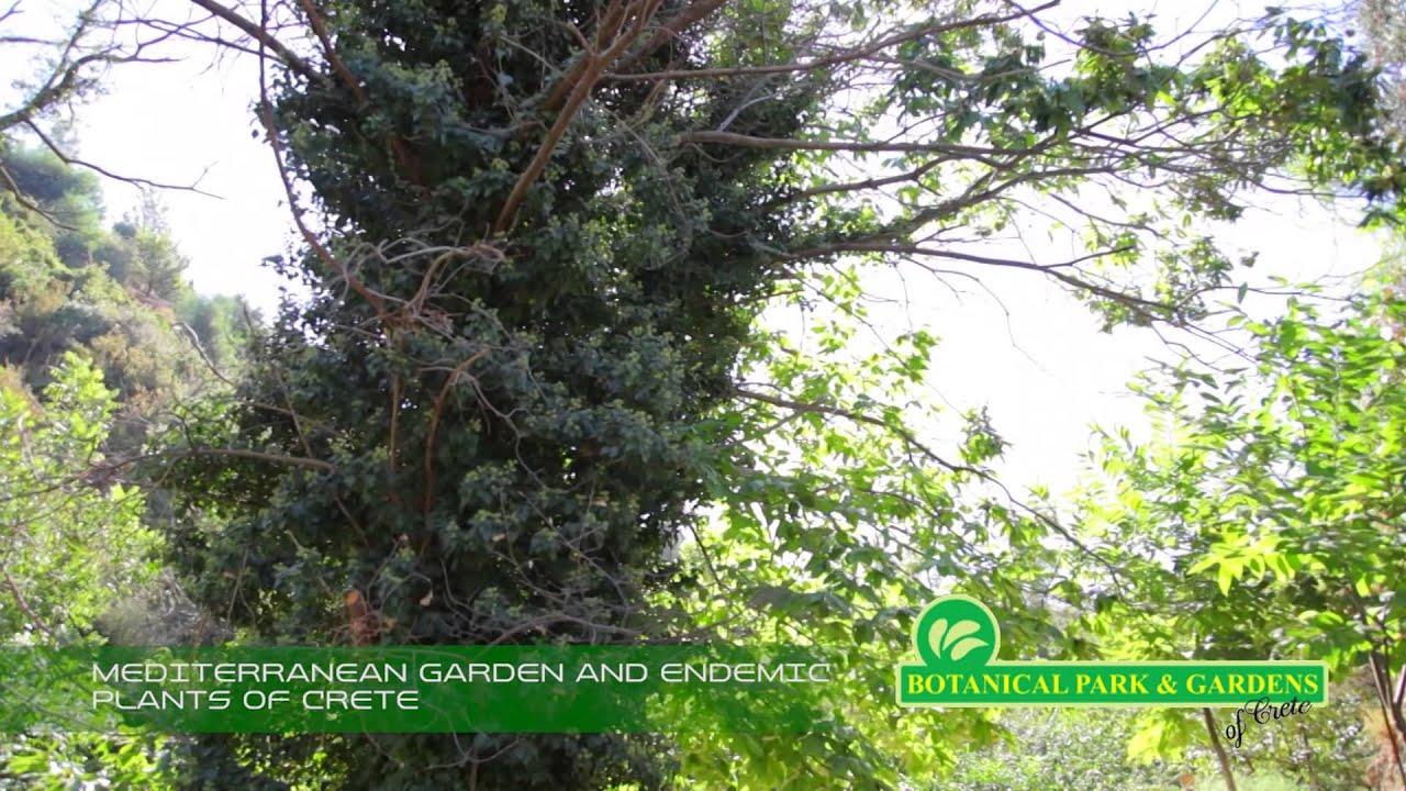 BOTANICAL PARK & GARDENS OF CRETE -MEDITERRANEAN GARDEN ...