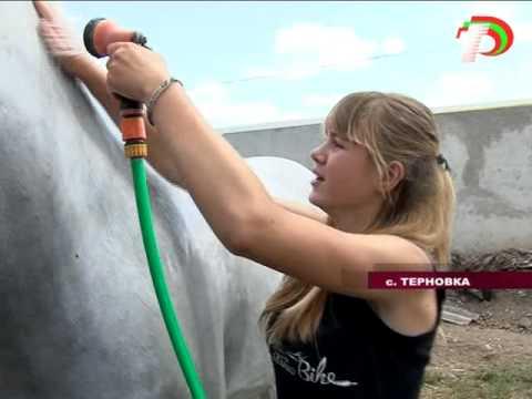 В Терновке под открытым небом открылся лагерь