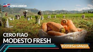 Modesto Fresh #2018SeráMejor
