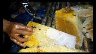 Pencari Madu 'Menuju lokasi Sarang Lebah Madu' (Desa Libur Dinding, Kab. Paser, Kaltim). part 2 of 2