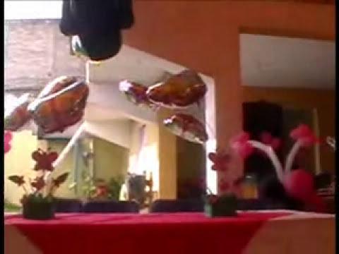 DECORACION CON GLOBOS ( LLENO DE MARIPOSAS )