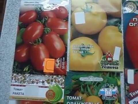 Какие сорта томата выбрать для посадки  ПОВТОРЯЙ ЗА МНОЙ! От Ольги Черновой начинающим садоводам  20
