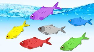Learn baby colors with fishes from the ocean | colors for children