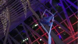 Aerial Silks in Allen Lambert Galleria at BCE Place