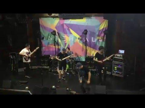Live - Libra