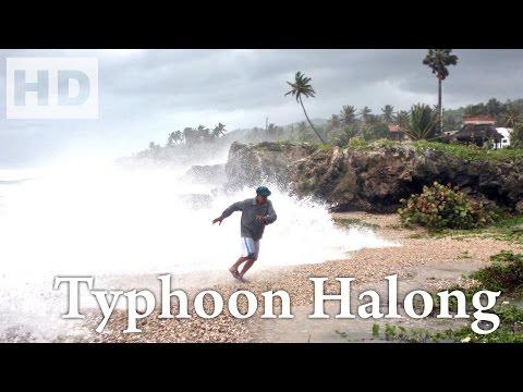 276. Typhoon Halong remains on target to slam Japan