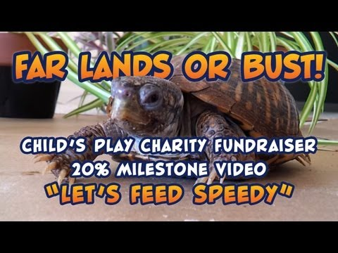 Let's Feed Speedy the Box Turtle - Far Lands or Bust 20% Fundraiser Milestone