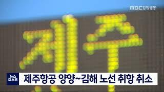 제주항공 양양~김해 노선 취항 취소