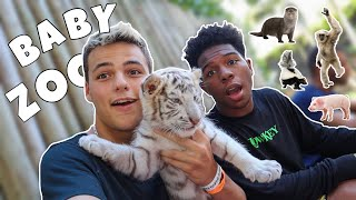 Playing with BABY TIGERS!! ft. Deshae Frost