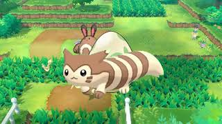 Pokemon Planet: The Furret
