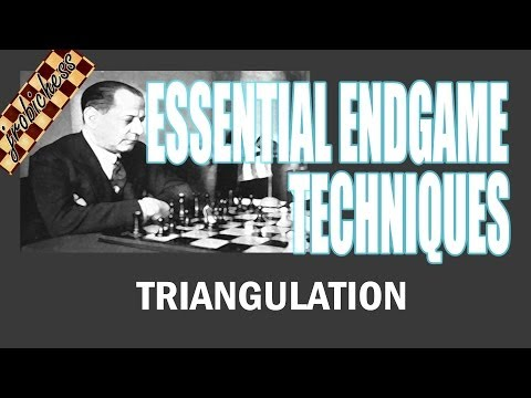 Chess Endgame Study: Triangulation