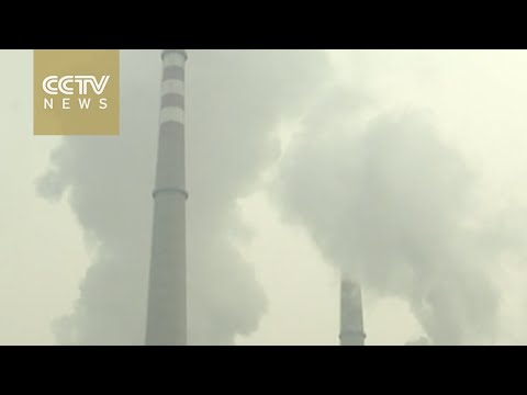 China to become world's top carbon trader