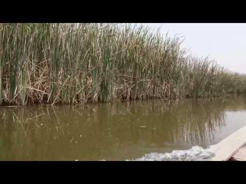 اهوار العراق Iraqi Marshlands