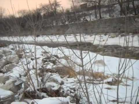 Milwaukee Wisconsin, Menomonee River Fishing Report, 02-06-13