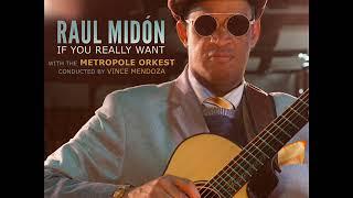 Raul Midón Pick Somebody Up