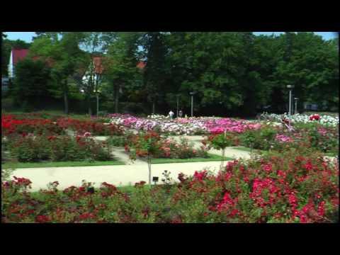 Park Kasprowicza W Szczecinie