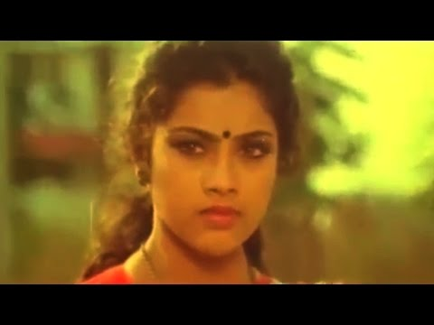Punya Bhoomi Naa Desam Movie || Villain Meena Saree Remove Scene || Mohan , Meena video