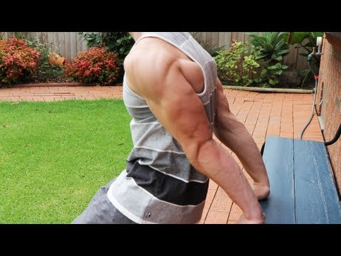 Intense Home Tricep Hypertrophy Workout: No Weights! Image 1