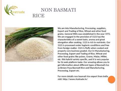Basmati Rice, Basmati rice Export in India, Basmati rice Price in India