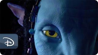 Behind the Scenes of Pandora - The World of Avatar   Disney