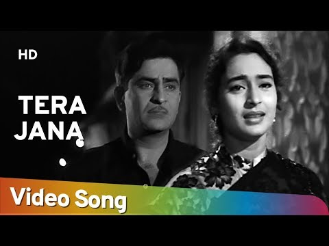 Tera Jana Dil - Raj Kapoor - Nutan - Anari - Lata Mangeshkar - Evergreen Hindi Songs video