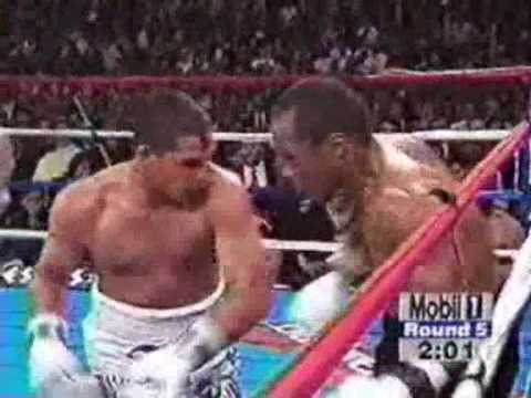 The fastest boxers of all time Part 2 Image 1