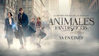 Animales Fantásticos y Dónde Encontrarlos - Tráiler Final Castellano HD