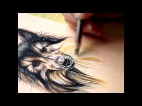 How to draw fur- colored pencils