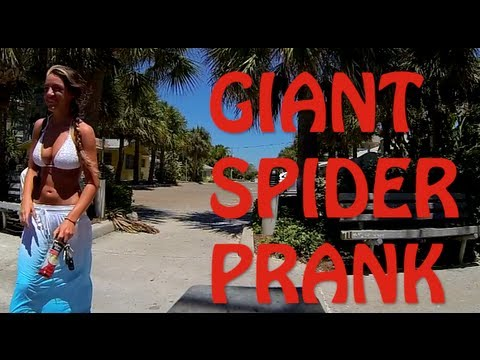Giant Spider Prank At The Beach (Public Prank 2013)