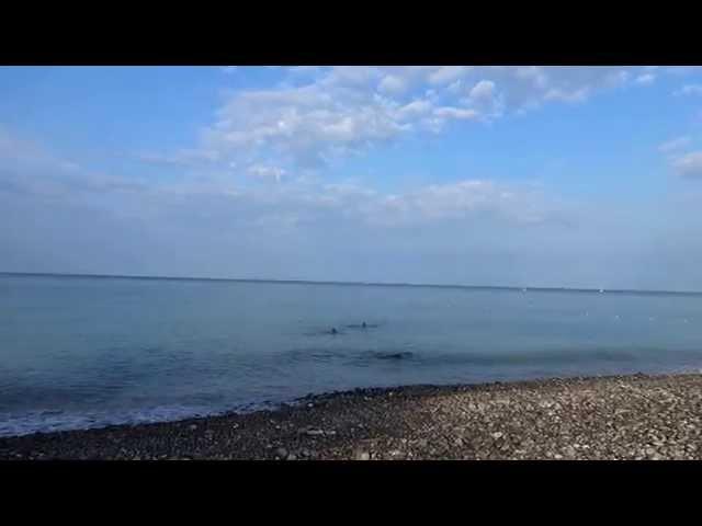 Море, солнце... погода в Лазаревском 15 июля t +22°C, вода t +26°C,  SOCHI RUSSIA