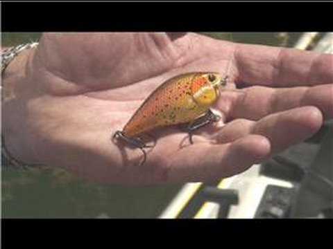 Bass Fishing : Bass Fishing Lure Tips Video
