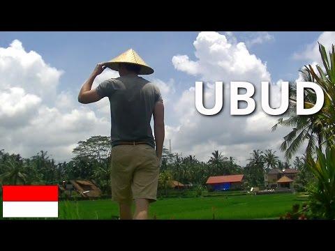 Mit Mama und Gipsfuß Ubud erkunden | Monkey Forest | Tegenungan. Weltreise Vlog #032