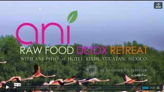 ANI PHYO RAW FOOD DETOX RETREAT IN CELESTUN