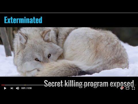 Exterminated: Secret killing program exposed